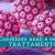 Condilomi anali e rettali, trattamento - Il Blog del Prof. Paolo Barillari