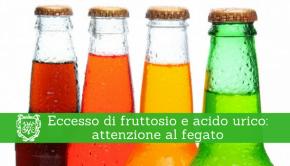 Eccesso di fruttosio e acido urico - Prof Paolo Barillari